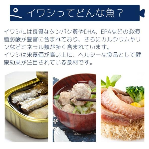 イワシ DHA EPA ペプチド 青魚 アミノ酸 カルシウム ミネラル 健康 いわし缶 よりお手軽 サプリ サプリメント 約3ヶ月分_ZRB|oga|04
