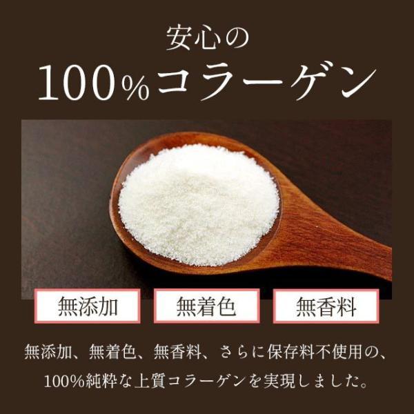 さらさら コラーゲン 純度100% (酵素処理 低分子 ペプチド 化) エイジングケア パウダータイプ 100g_ZRB|oga|07