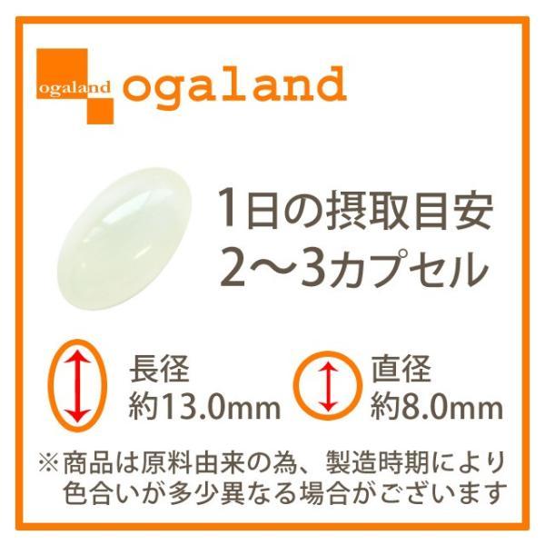 ココナッツオイル サプリ エキストラバージン エクストラバージン 中鎖脂肪酸 ラウリン酸 ケトン体 ダイエット サプリメント 約3ヶ月分|oga|10