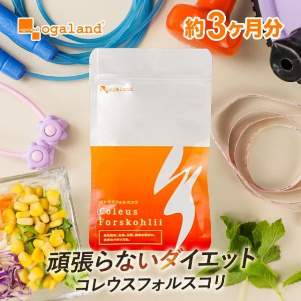 コレウス フォルスコリ (フォレスコリ フォルスコリン) 燃焼系 サプリ サプリメント 約3ヶ月分|oga