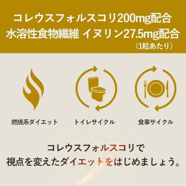 フォルスコリ サプリ コレウスフォルスコリ フォルスコリン 燃焼系 ダイエット オーガランド サプリメント 約1ヶ月分 _ZRB oga 18