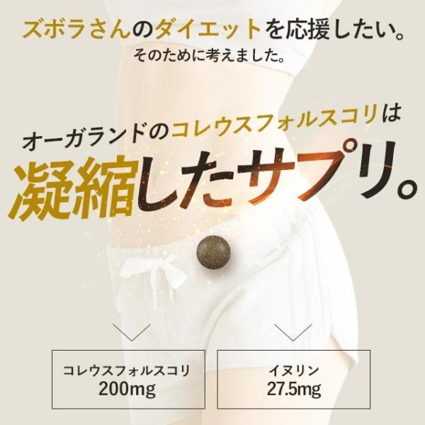 フォルスコリ サプリ コレウスフォルスコリ フォルスコリン 燃焼系 ダイエット オーガランド サプリメント 約1ヶ月分 _ZRB oga 08