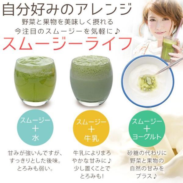 グリーンスムージー 酵素ダイエット フルーツミックス味 酵素ドリンク 200g_ZRB|oga|11