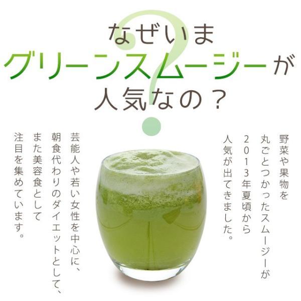 グリーンスムージー 酵素ダイエット フルーツミックス味 酵素ドリンク 200g|oga|02