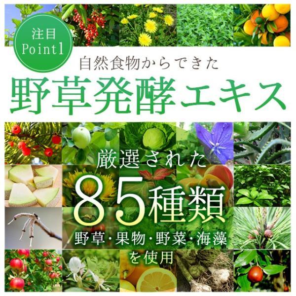 グリーンスムージー 酵素ダイエット フルーツミックス味 酵素ドリンク 200g|oga|04