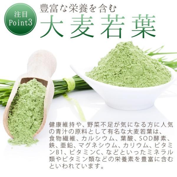 グリーンスムージー 酵素ダイエット フルーツミックス味 酵素ドリンク 200g_ZRB|oga|06
