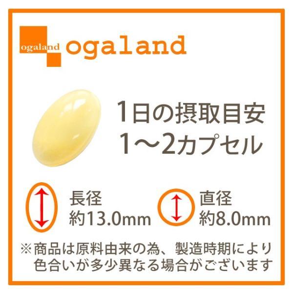 はとむぎ サプリ ハト麦 サプリメント ハトムギ 化粧水との併用がオススメ 植物 レシチン 約3ヶ月分|oga|13