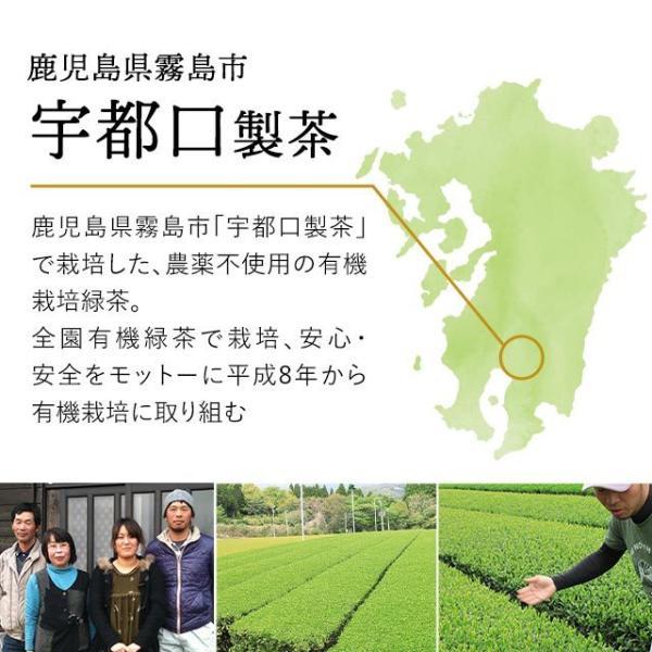 送料無料 緑茶 粉末 茶葉 カテキン緑茶 粉末緑茶 サポニン 有機緑茶 鹿児島県産 有機栽培緑茶 KONACHA 50g 2個セット _在管|oga|05