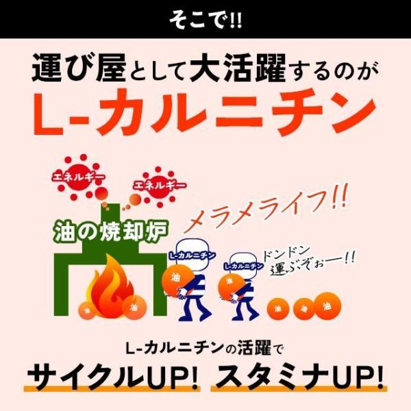 Lカルニチン サプリ ダイエット サポート アミノ酸 燃焼系 サプリメント 約1ヶ月分|oga|09
