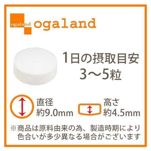 Lカルニチン (lカルチニンフマル酸塩) ダイエット サポート アミノ酸 燃焼系 サプリ サプリメント 約3ヶ月分|oga|11