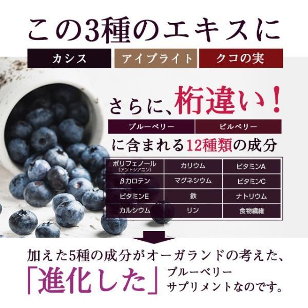 ブルーベリー サプリメント ポリフェノール アントシアニン デジタルケア クコの実 カシス ビタミンB 約3ヶ月分|oga|13