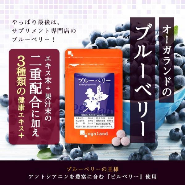 ブルーベリー サプリメント ポリフェノール アントシアニン デジタルケア クコの実 カシス ビタミンB 約3ヶ月分|oga|02
