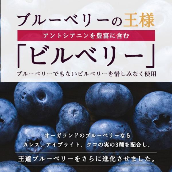ブルーベリー サプリメント ポリフェノール アントシアニン デジタルケア クコの実 カシス ビタミンB 約3ヶ月分|oga|03