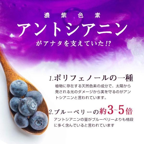 ブルーベリー サプリメント ポリフェノール アントシアニン デジタルケア クコの実 カシス ビタミンB 約3ヶ月分|oga|05