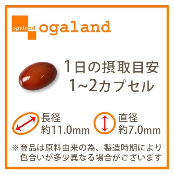 プロテオグリカン サプリ ヒアルロン酸 や コラーゲン と共に 潤い を支えます エイジングケア 美容 サプリメント 約1ヶ月分_ZRB|oga|10