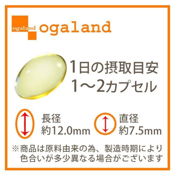 ローズ サプリ 飲める香水 フレグランス サプリメント エチケット アロマ サプリ 約1ヶ月分 ポイント消化 送料無料|oga|14