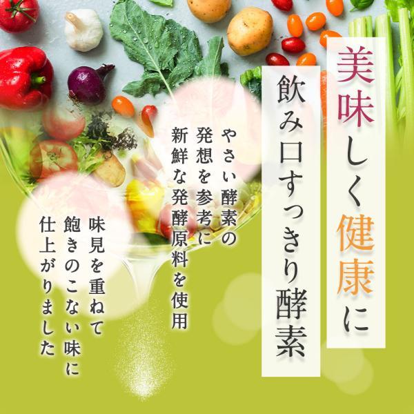 酵素ドリンク クレンズ 置き換え ダイエット さらさら 酵素 ドリンク 30包 野草 植物 酵素 送料無料|oga|02