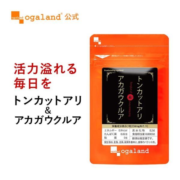 トンカットアリ サプリ 亜鉛 アルギニン シトルリン オルニチン マムシ 赤ガウクルア アカガウクルア サプリメント 60粒 送料無料|oga