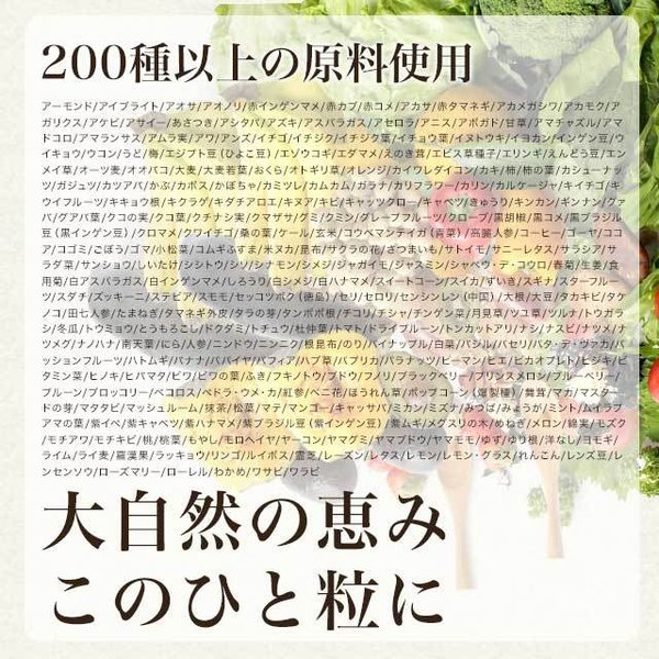 やさい酵素 約3ヶ月分 ダイエットサプリ 生酵素 野菜 野草 サプリ サプリメント 送料無料 _ZRB|oga|12