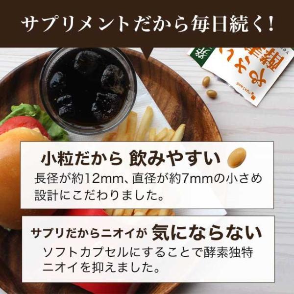 やさい酵素 約4ヶ月分 今だけ増量中 ダイエットサプリ 野菜 野草 サプリ サプリメント 送料無料|oga|19