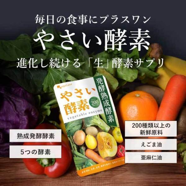 やさい酵素 約3ヶ月分 ダイエットサプリ 生酵素 野菜 野草 サプリ サプリメント 送料無料 _ZRB|oga|19