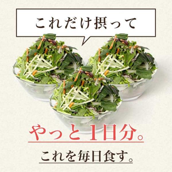 やさい酵素 約3ヶ月分 ダイエットサプリ 生酵素 野菜 野草 サプリ サプリメント 送料無料 _ZRB|oga|04
