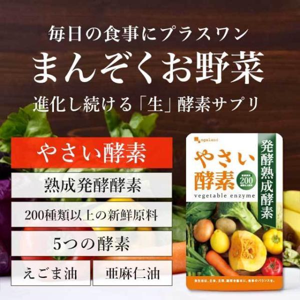 やさい酵素 約3ヶ月分 ダイエットサプリ 生酵素 野菜 野草 サプリ サプリメント 送料無料 _ZRB|oga|06