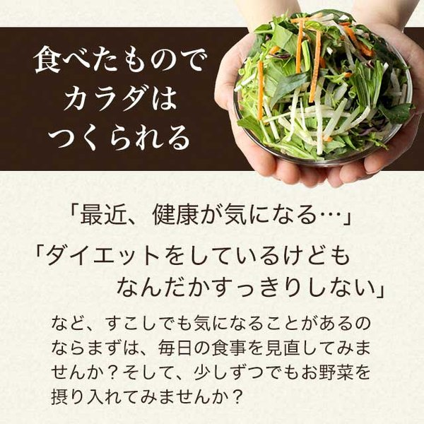 やさい酵素 約4ヶ月分 今だけ増量中 ダイエットサプリ 野菜 野草 サプリ サプリメント 送料無料|oga|10