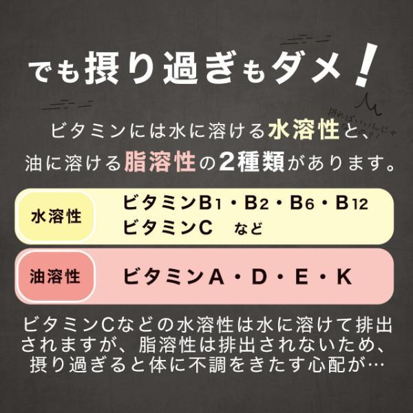 ビタミン サプリメント サプリ マルチビタミン ビタミンD ビタミンM ビタミンE ビタミンC 13種類 約3ヶ月分 送料無料|oga|11