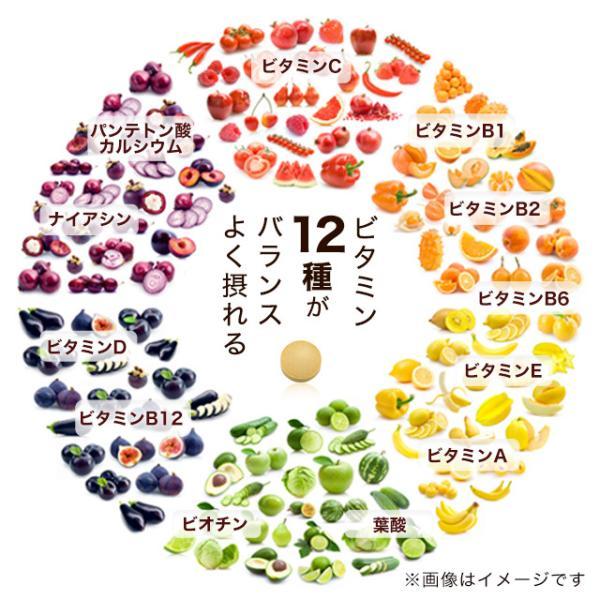 ビタミン サプリメント サプリ マルチビタミン 約3ヶ月分 ビタミンD ビタミンM ビタミンE ビタミンC 栄養機能食品 送料無料_ZRB|oga|12