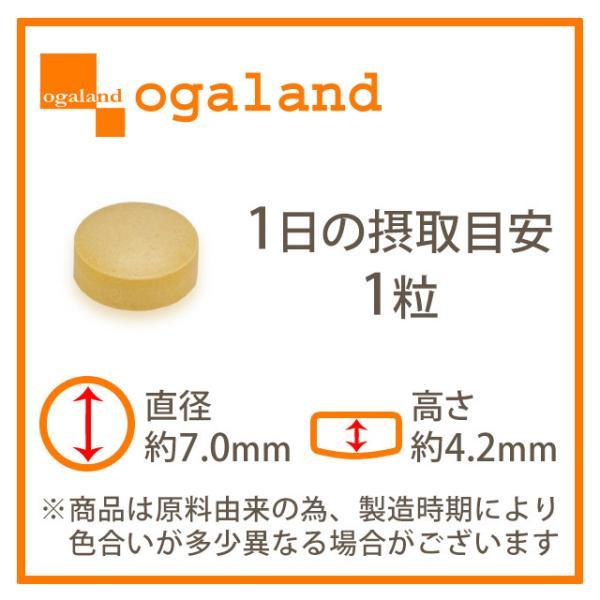 ビタミン サプリメント サプリ マルチビタミン 約3ヶ月分 ビタミンD ビタミンM ビタミンE ビタミンC 栄養機能食品 送料無料_ZRB|oga|13