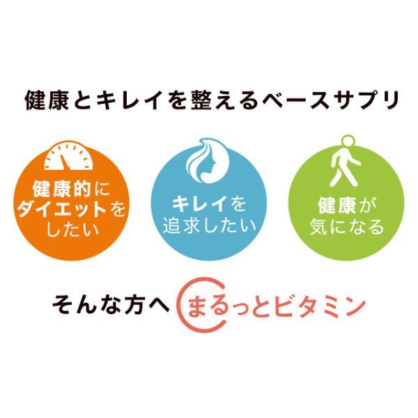 ビタミン サプリメント サプリ マルチビタミン 約3ヶ月分 ビタミンD ビタミンM ビタミンE ビタミンC 栄養機能食品 送料無料_ZRB|oga|06