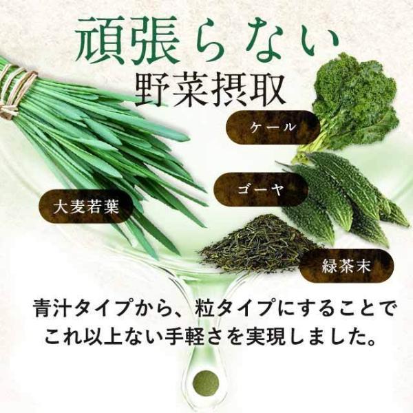 大麦若葉 サプリ ケール ゴーヤ 緑茶末 ミネラル カルシウム 食物繊維 ビタミン 野菜不足 が手軽に補給できる 青汁 サプリメント 約3ヶ月分 oga 02