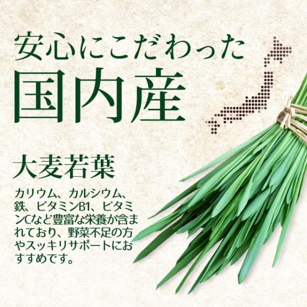 大麦若葉 サプリ ケール ゴーヤ 緑茶末 ミネラル カルシウム 食物繊維 ビタミン 野菜不足 が手軽に補給できる 青汁 サプリメント 約3ヶ月分 oga 04