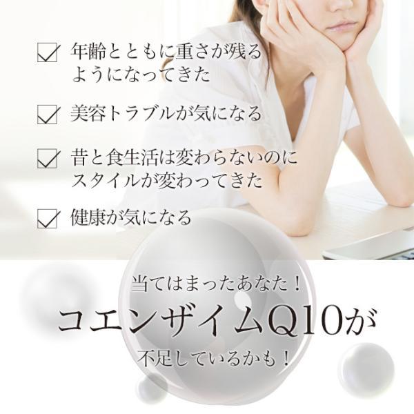 Q10 サプリ コエンザイムQ10 補酵素 エイジングケア 燃焼サポート サプリメント 約1ヶ月分|oga|04