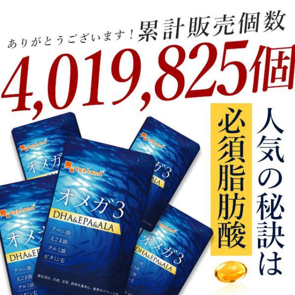 サプリ オメガ3 EPA 送料無料 サプリメント 今だけ増量中 オメガ3脂肪酸 DHA αリノレン酸 約4ヶ月分|oga|08