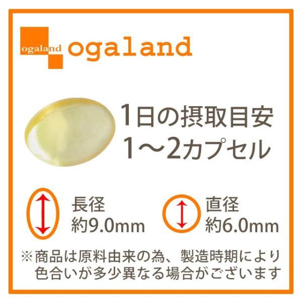 オメガ3 DHA EPA αリノレン酸 サプリメント 約1ヶ月分 アマニ油 亜麻仁油 ご家族の健康始めましょう 送料無料 ポイント消化_ZRB|oga|13