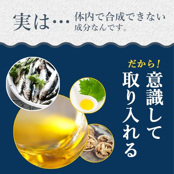 オメガ3 DHA EPA αリノレン酸 サプリメント 約1ヶ月分 アマニ油 亜麻仁油 ご家族の健康始めましょう 送料無料 ポイント消化_ZRB|oga|07