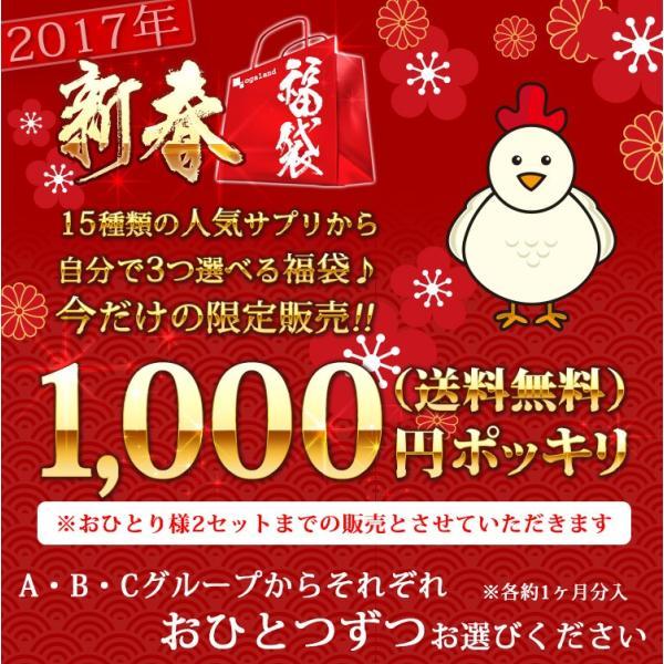 サプリ 2017年  新春 選べる サプリメント 福袋 1000円 ポッキリ 送料無料|oga|02
