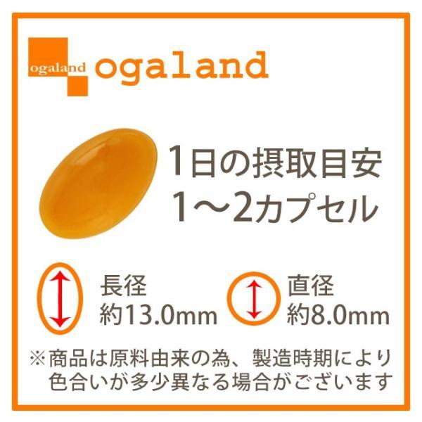 プラセンタ サプリメント サプリ アルガンオイル コラーゲン エイジングケア 濃縮50倍 美容 アミノ酸 ミネラル 約3ヶ月分|oga|15