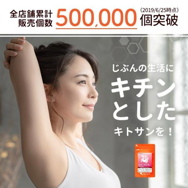 キトサン サプリ キチンキトサン 動物性 食物繊維 サプリメント 約6ヶ月分 送料無料 半年分セール|oga|03