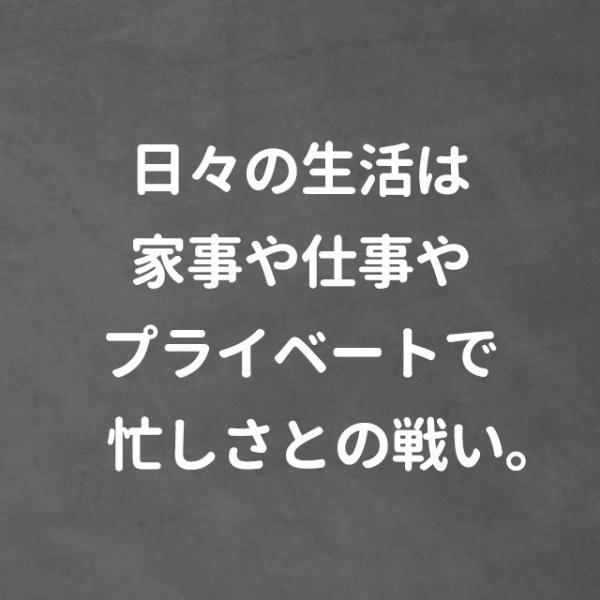 キチン キトサン (動物性 食物繊維) サプリメント 約6ヶ月分 【半年分】 _JD|oga|06