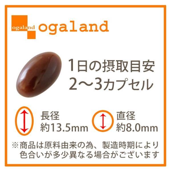 香酢 サプリメント アミノ酸 サプリもろみ 健康酢 約1ヶ月分 送料無料_ZRB|oga|09