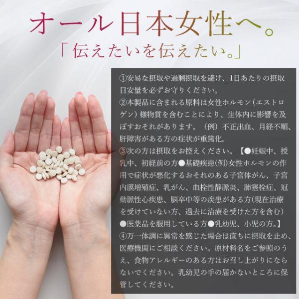 プエラリア サプリ デキストリン サプリメント 2個セット 120粒_ZRB|oga|07
