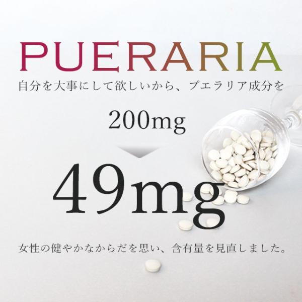 プエラリア サプリ デキストリン サプリメント 2個セット 120粒_ZRB|oga|08