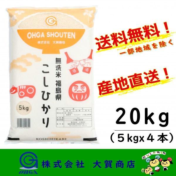 2年産 無洗米 コシヒカリ 小分け 20kg 福島県産 お米 米 白米 送料無料 福島県中通り産コシヒカリ5kgx4本 無洗米
