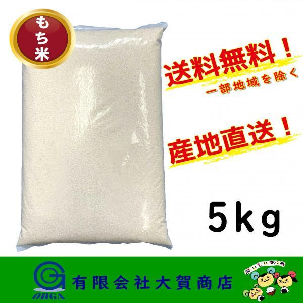 米 お米 白米 小分け 5kg もち米 精米 送料無料 もち米5kg