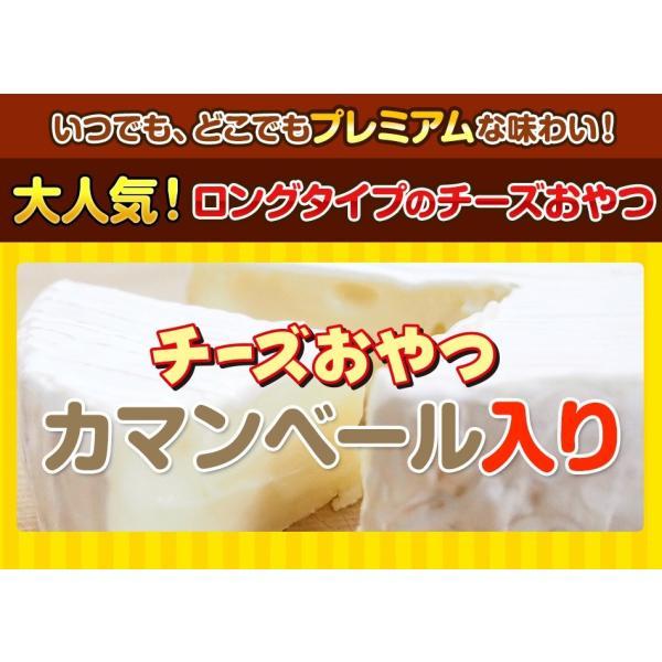 珍味 チーズおやつロング 送料無料 40本入り おやつ お菓子 チーズ ちーず カマンベール メール便 ohgiya-f 02