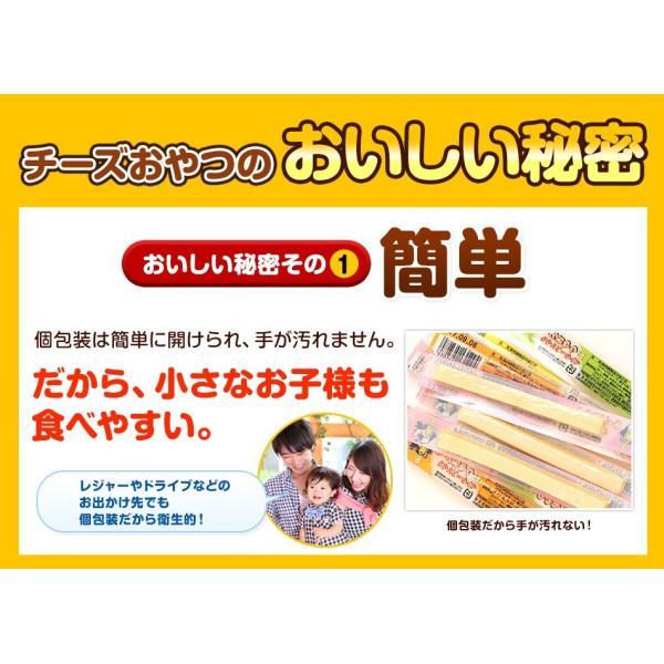珍味 チーズおやつロング 送料無料 40本入り おやつ お菓子 チーズ ちーず カマンベール メール便 ohgiya-f 03