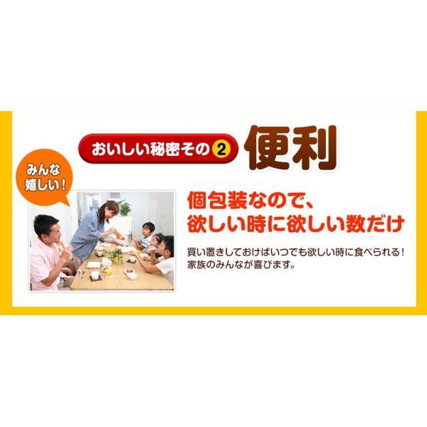 珍味 チーズおやつロング 送料無料 40本入り おやつ お菓子 チーズ ちーず カマンベール メール便 ohgiya-f 04